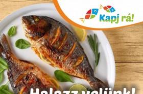 Hétköznapi halas ételek