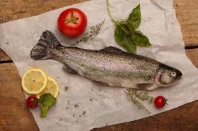 Milyen a friss hal?
