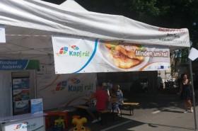 """A mohácsi Dunamenti Halfesztiválon is kampányol a """"Kapj rá!"""""""