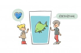 Mik is azok az édesvízi halfajok?